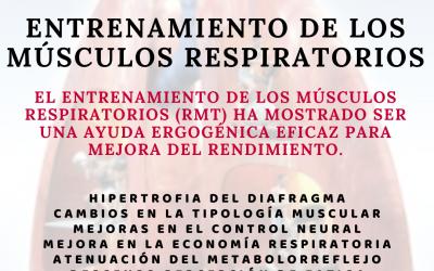Importancia de los músculos respiratorios