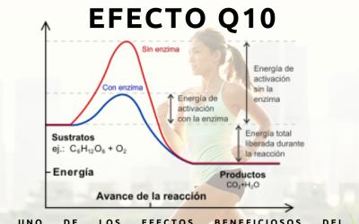 Efecto Q10